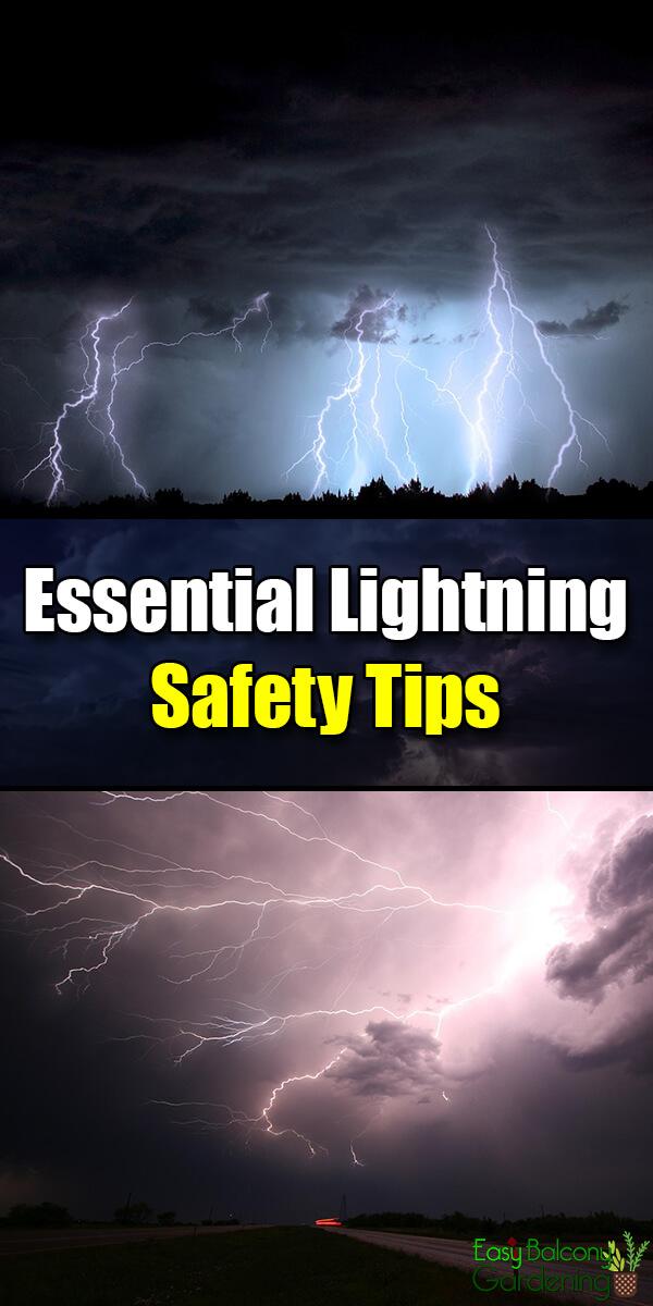 Essential Lightning Safety Tips - Easy Balcony Gardening