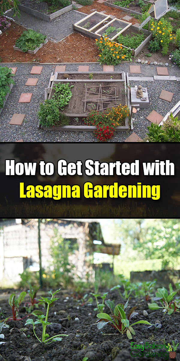How to Get Started with Lasagna Gardening - Easy Balcony Gardening