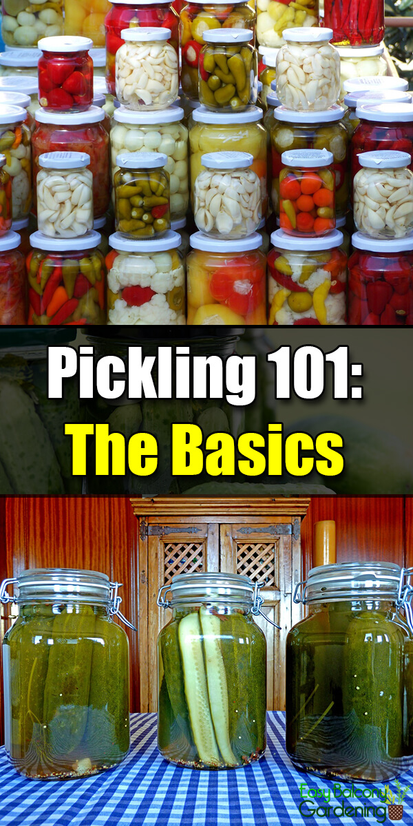 Pickling 101: Basic Tips and Things to Remember - Easy Balcony Gardening