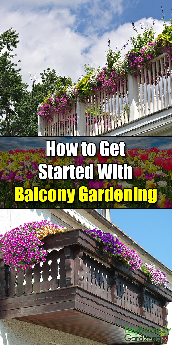 How to Get Started With Balcony Gardening - Easy Balcony Gardening