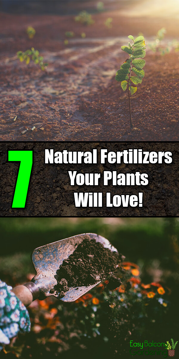 7 Types of Natural Fertilizers Your Plants Will Love! - Easy Balcony Gardening