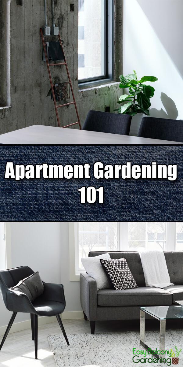 Apartment Gardening 101 - Easy Balcony Gardening