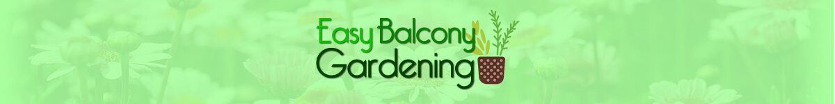 Easy Balcony Gardening