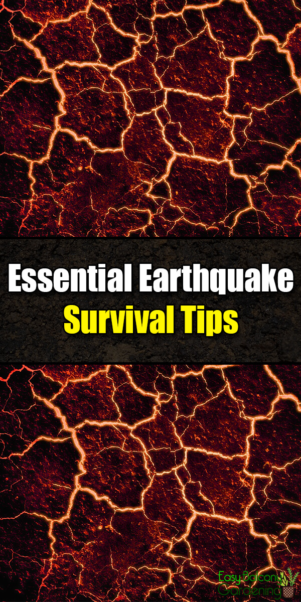 Essential Earthquake Survival Tips - Easy Balcony Gardening