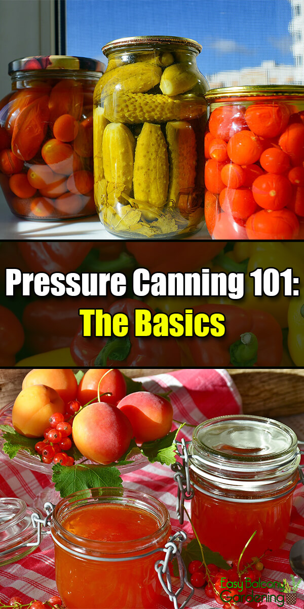 Pressure Canning 101: The Basics - Easy Balcony Gardening