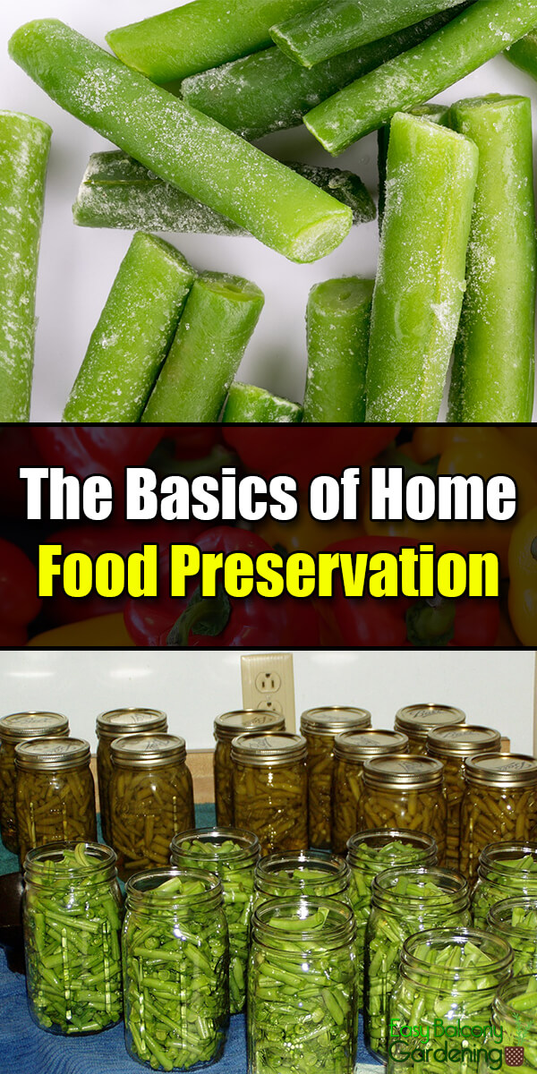 The Basics of Home Food Preservation - Easy Balcony Gardening