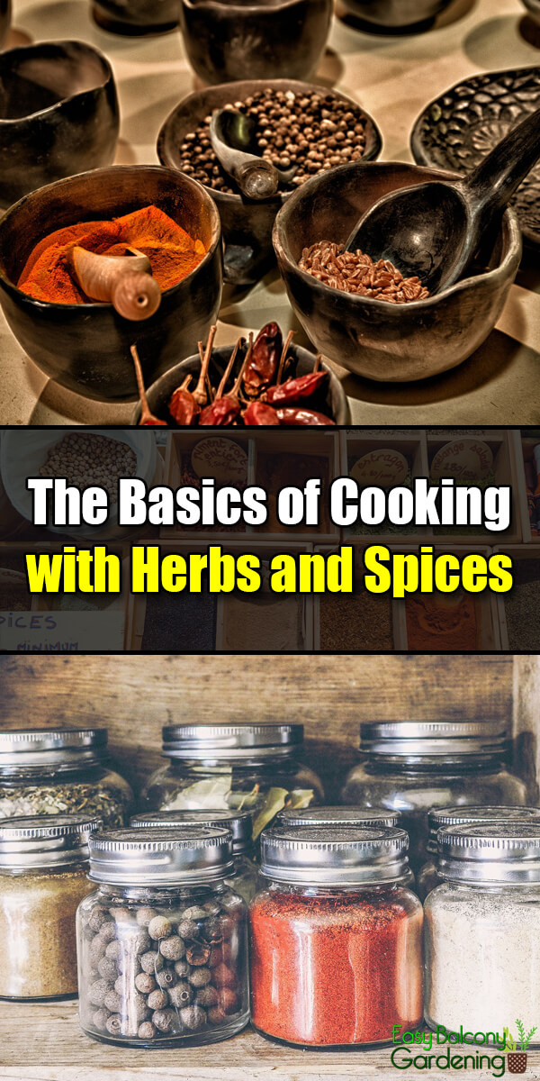 The Basics of Cooking with Herbs and Spices