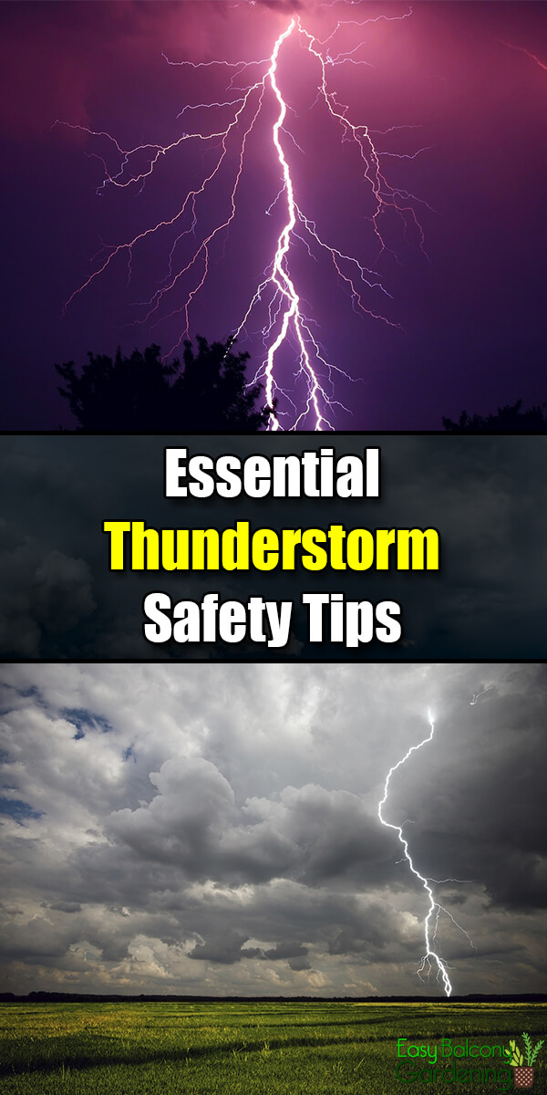 Essential Thunderstorm Safety Tips - Easy Balcony Gardening