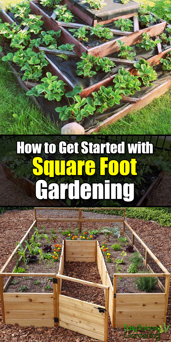 How to Get Started with Square Foot Gardening - Easy Balcony Gardening