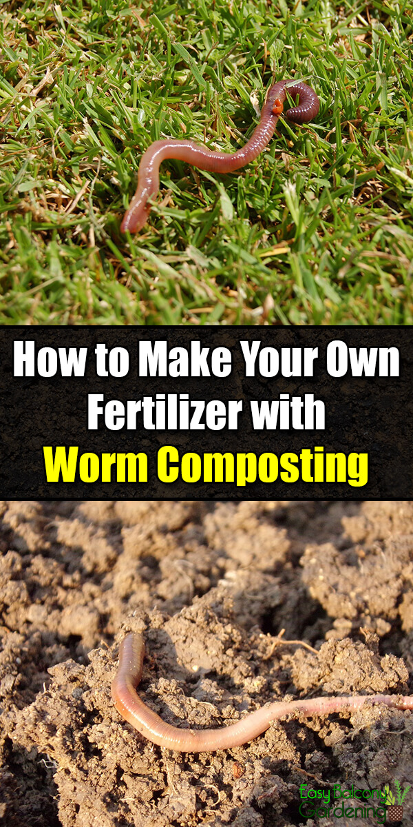 How to Use Worm Composting for Nutrient-Rich Natural Fertilizer - Easy Balcony Gardening