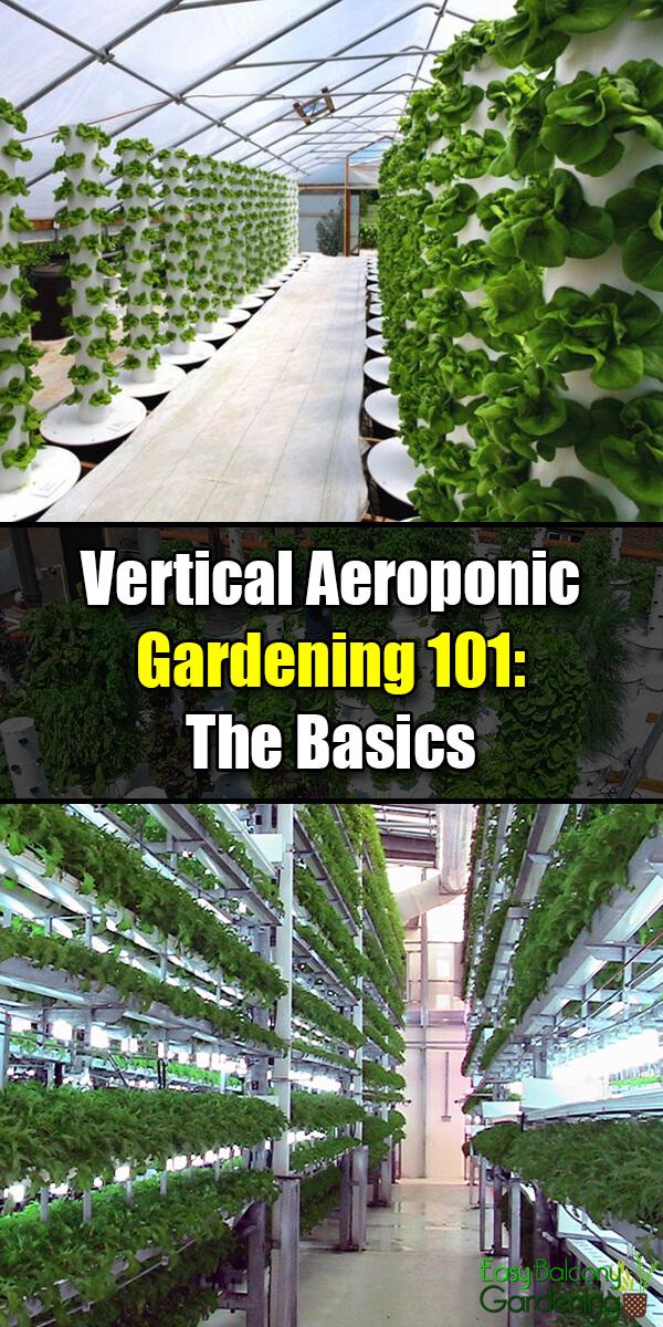 Vertical Aeroponic Gardening 101: The Basics - Easy Balcony Gardening