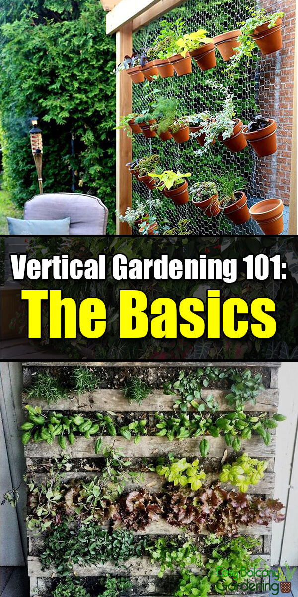Vertical Gardening 101: The Basics - Easy Balcony Gardening